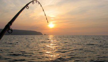 Boğazda Balık Avı Turu ve Boğazda Tur Fiyatları